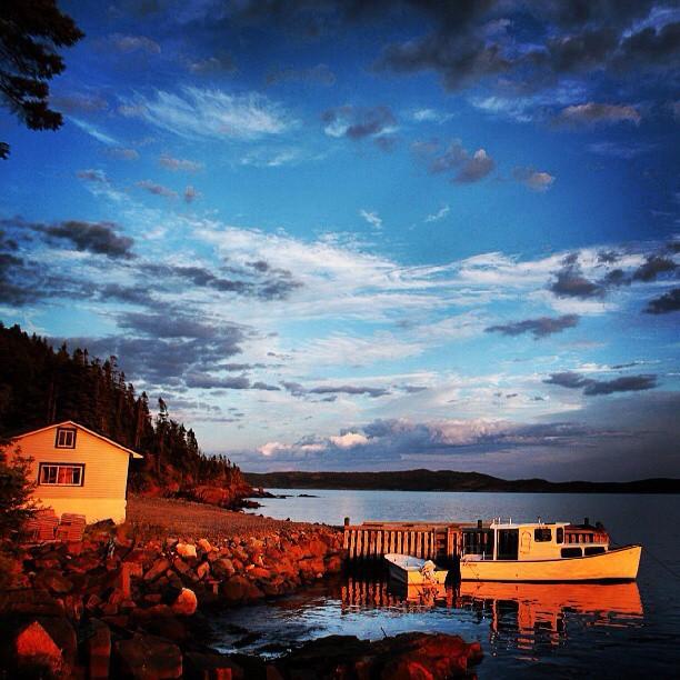 New Foundland via @sarah_burns_photo