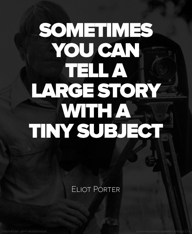 Eliot Porter Quote #Photography #Quote