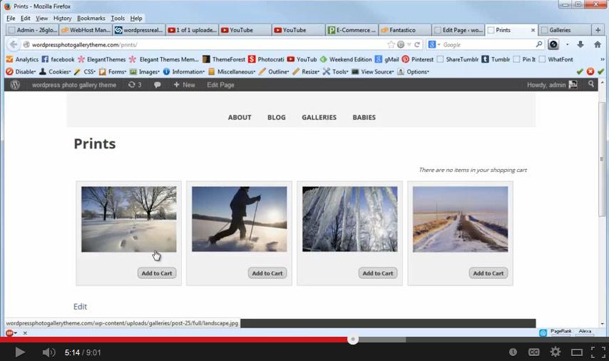 How to Setup eCommerce for the Photocrati WordPress Theme