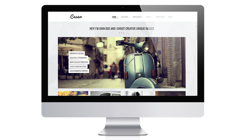Cesar WordPress eCommerce Photography Theme